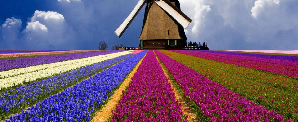 Agenzia viaggi baldini roberto organizzazione viaggi di for Tassa di soggiorno amsterdam